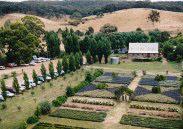 lavandula-aerial-view-of-lavender-pattern-garden-barn