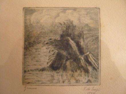 spighe-di-grano-1936-2_picnik